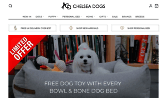 Chelseadogs com ▷ Observe Chelsea Dog S News | Luxury Dog