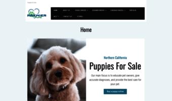 Norcalpups com ▷ Observe Nor CA Lpups News | Puppies for