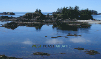 westcoastaquatic.ca